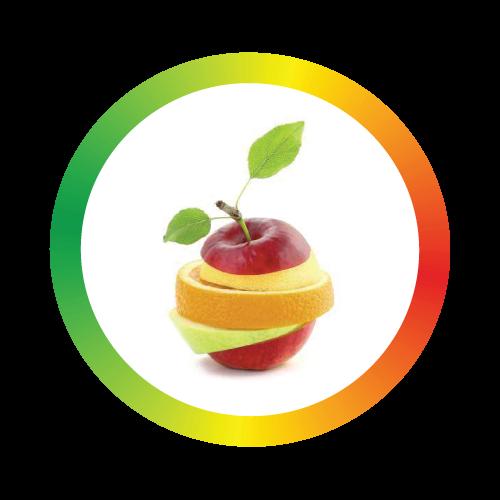 logo-terviseaudit